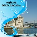 Beşiktaş Böcek İlaçlama