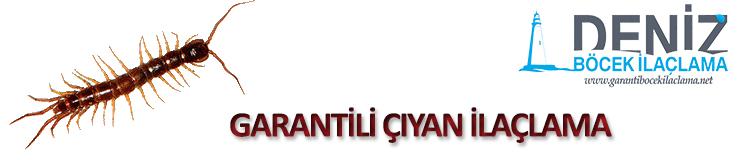 garantili-ciyan-ilaclama