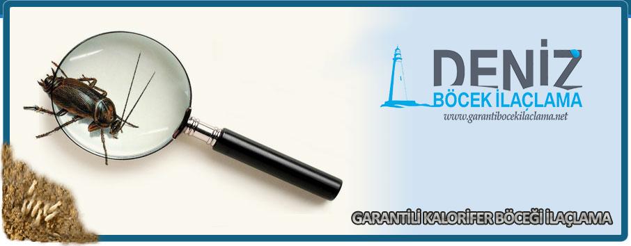 garantili-kalorifer-bocegi-ilaclama