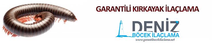 garantili-kirkayak-ilaclama