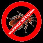 Kalorifer Böceği İlaçlama
